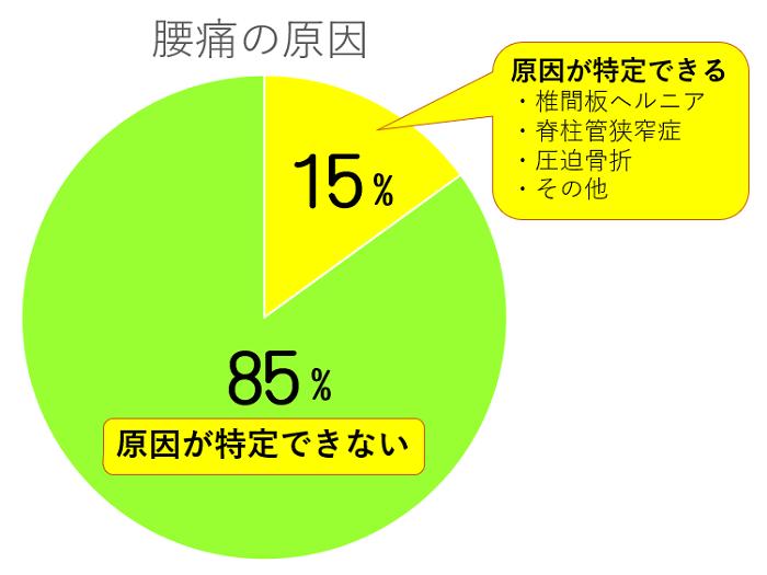 大蔵カイロ川越伊勢原整体院腰痛02