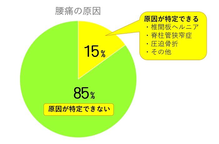 腰痛の原因は85%が非特異的腰痛のグラフ