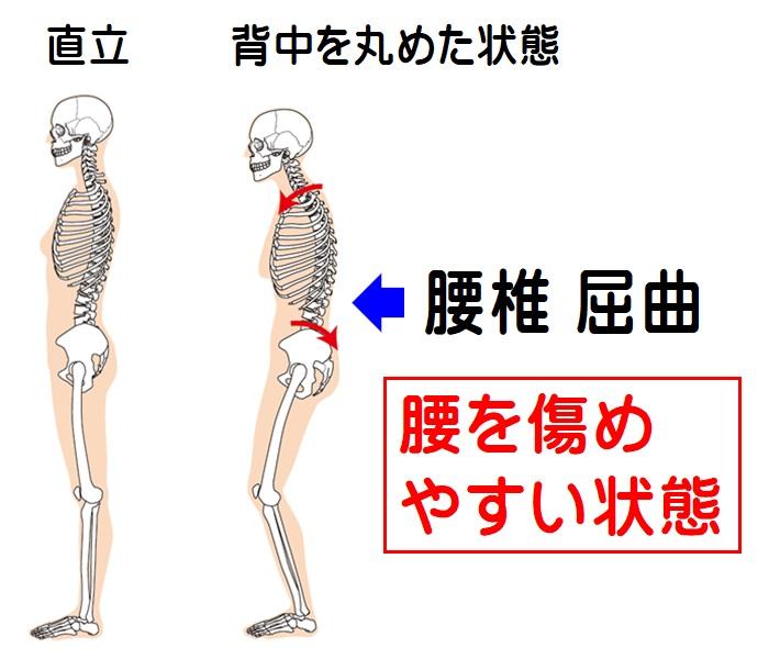 腰椎の屈曲 比較図